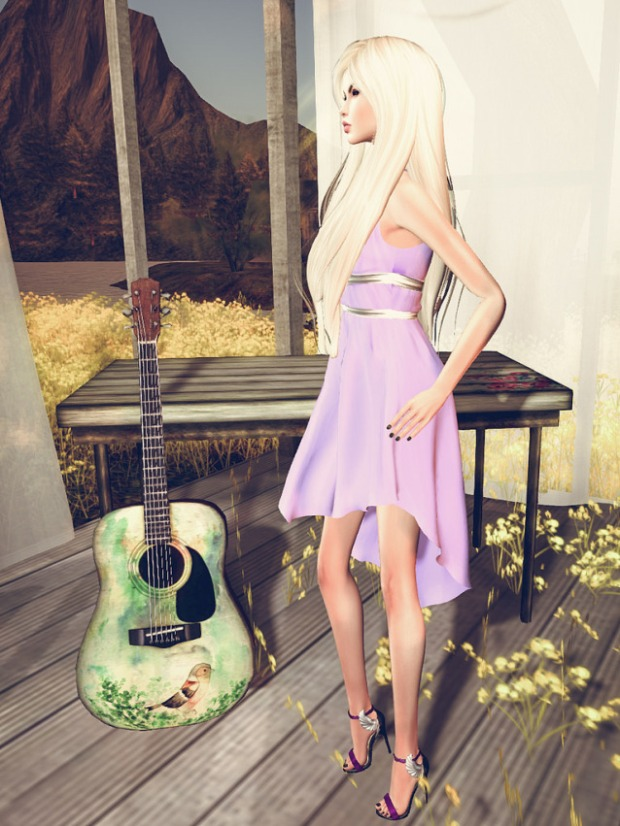 The girl and guitar